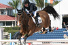 Palm Beach International Competition