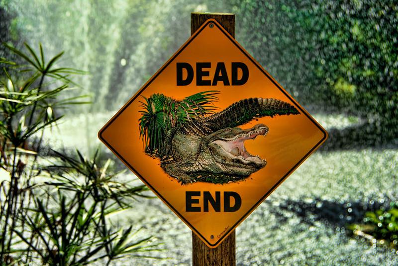 Dead End<br /> Steve Rudy