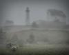 As the Fog Rolls In
