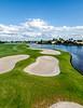 Ibis Golf