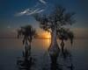 Sunrise Cypress  Lake