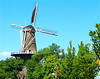 Dutch Windmill -    Jay Schwartz