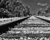 Vanishing Train Tracks - Steve Telchin