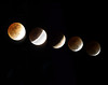 Eclipse<br /> Arthur Schreibman