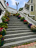 Stairway Lined With Potted Flowering Plants<br /> Kennebunkport, Maine