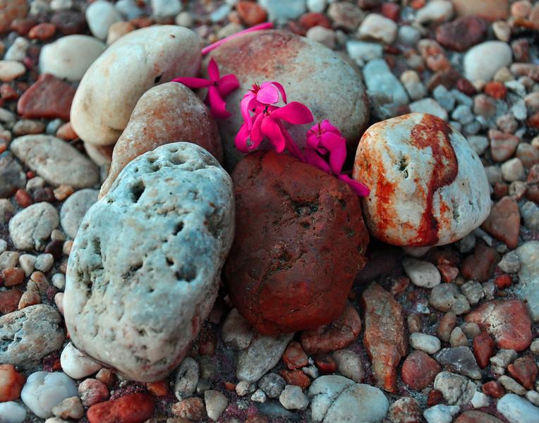 Pebbles up close