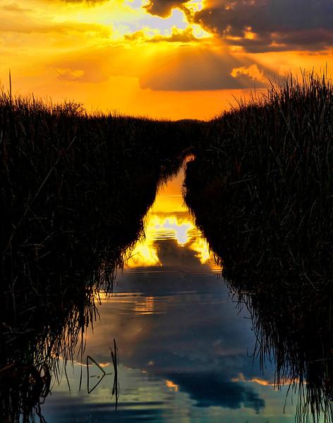 Sunset Highway - Everglades