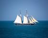 Under Sail at Martha's Vineyard