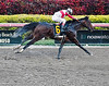 Orb Wins at Gulfstream