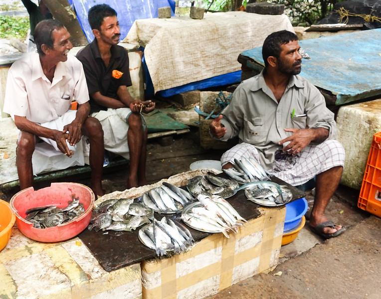 Fish Stall at Market