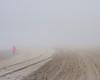 Alone in the Fog