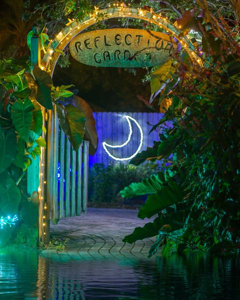 Reflection Garden