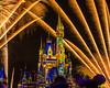 Mickey's Castle