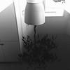 Woche 13: Spiegelung / Schwarz-Weiß
