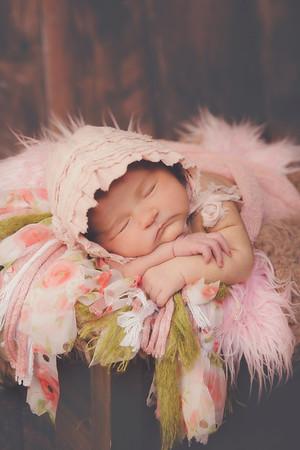 Chamberlin Newborn