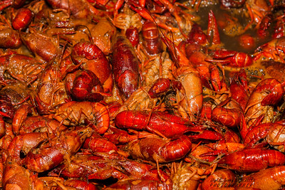 Crawfish and Blues Music at Champy's in Chattanooga, Tn. Photography by: Lloyd Kenney III © 2014 All Rights Reserved. Contact info: LloydKenneyiii@gmail.com