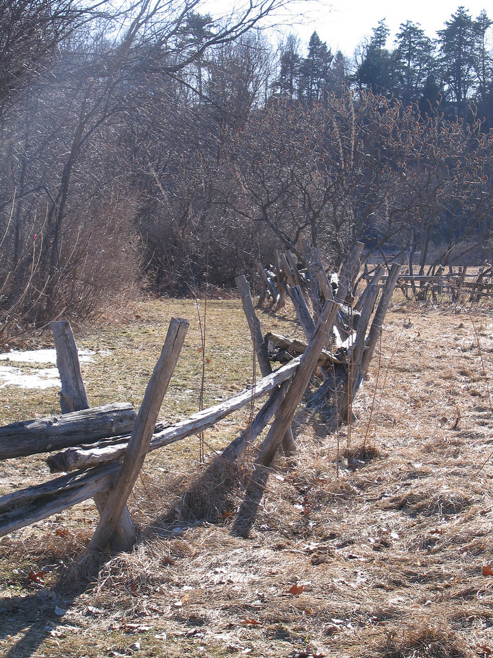 23 Stockade Fence, looking roughly West