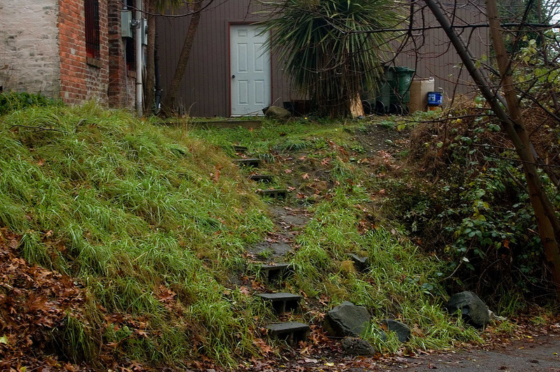 Well worn path.