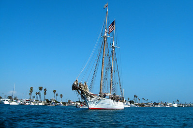 Bill of Rights, Island Packers new Tall Ship, 129' schooner, sails out of Oxnard. www.islandpackers.com 0509_1988