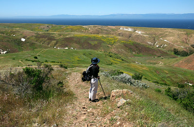Scorpion Loop Trail, Santa Cruz Island 0510_4221