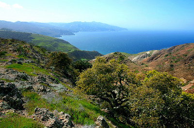 Looking towards Prisoners Harbor from Montanon Ridge trail, Santa Cruz Island. 0309_8724v2