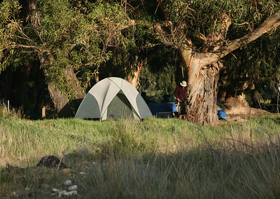 Campsite at Lower Scorpion 0407_2652