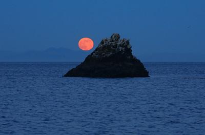 Moonrise, Santa Cruz Island. 1107_1360