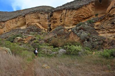 Lobo Canyon trail, Santa Rosa Island. 1114_0070