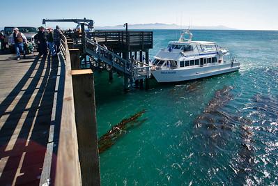 New Santa Rosa Pier. 1011_7387