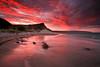 Santa Rosa Island :