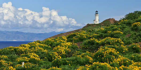 Anacapa Island lighthouse