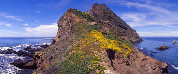 Panorama of West Anacapa, from Frenchy's Cove