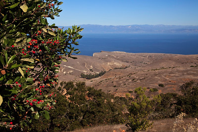 Montañon Ridge trail, Santa Cruz Island