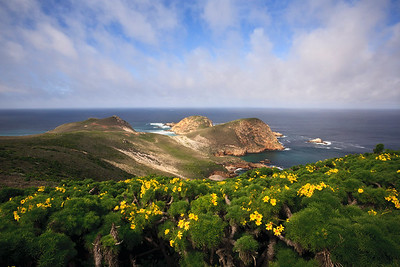 Harris Point, San Miguel Island