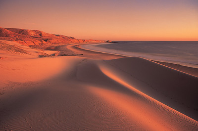 China beach dunes at sunset, Santa Rosa Island