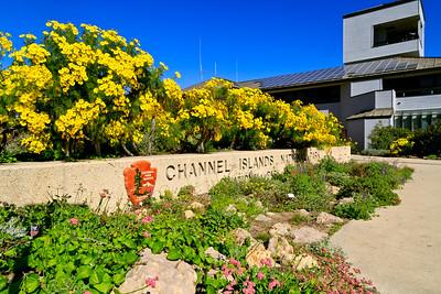Visitor center garden