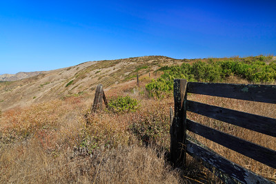Remnant of past ranching era, an old fence along the top of the isthmus.
