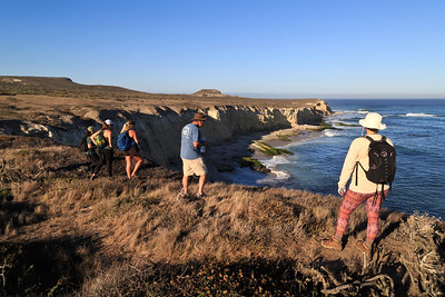 Cardwell Point is at the far eastern tip of San Miguel Island where visitors can observe California sea lions and Noarthern elephant seals. Cardwell Point is about a 6 mile round-trip hike from the campground.