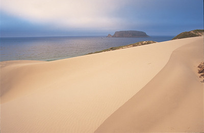 Channel Islands National Park, San Miguel Island, Cuyler Harbor sand dune, Prince Island in background