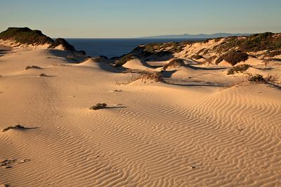 Sand dune above Simonton Cove
