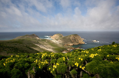 Channel Islands National Park, San Miguel Island, Harris Point