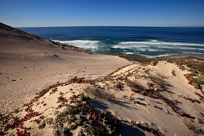 Sand dunes leading down to Simonton Cove