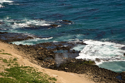 Sea Lion Rookery, with blowhole