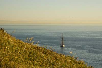 Sea Lion Rookery with tall ship anchored off shore