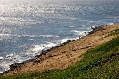 Sea Lion Rookery overlook
