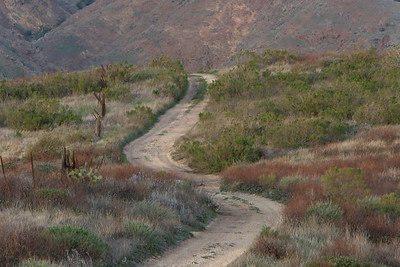 Isthmus - Road across the isthmus portion of Santa Cruz Island