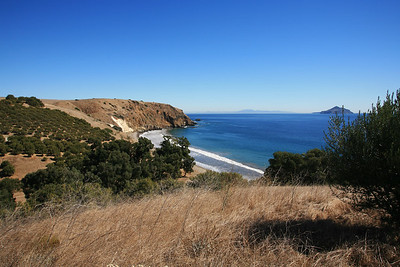 Smuggler's Cove with 100+ year-old olive grove