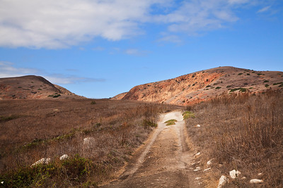 Trail/road between Scorpion Anchorage and Smuggler's Cove.  In background is Montañon Ridge