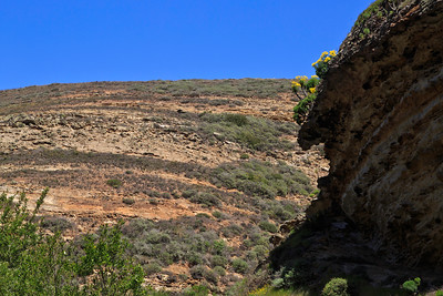 Lobo Canyon