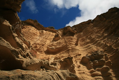Lobo Canyon sandstone formations